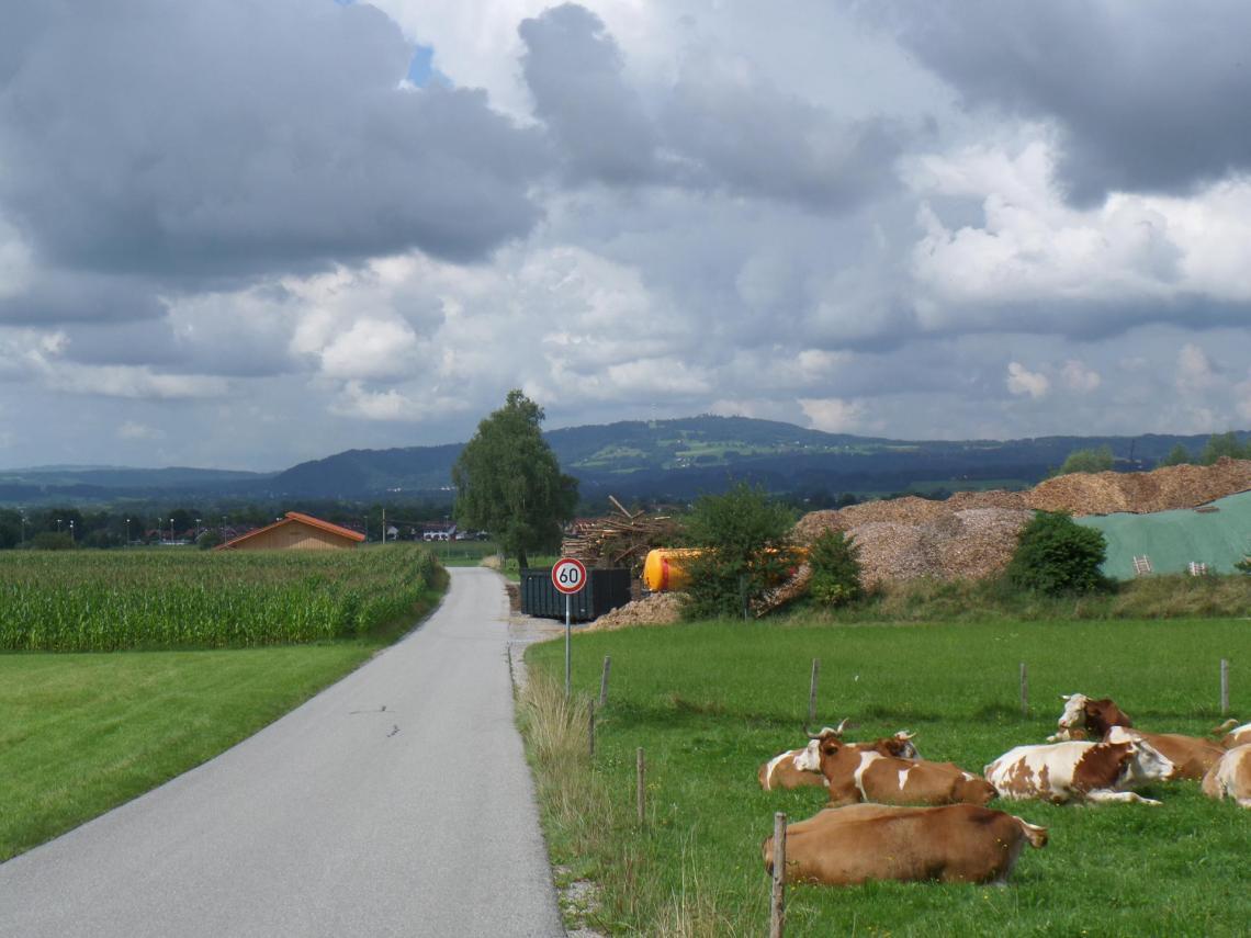Auf dem Weg zum Hohenpeißenberg